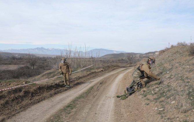 Azərbaycan Ordusunda xüsusi minatəmizləmə taboru yaradılıb
