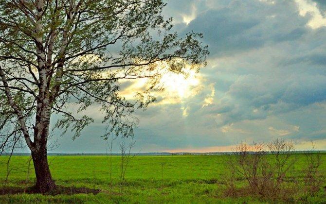 Sabah Bakıda hava dəyişkən buludlu olacaq, bölgələrə yağış yağacaq