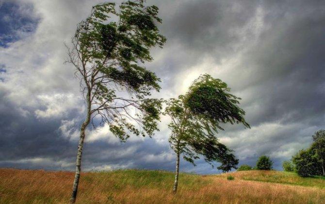 Meteohəssas insanlar üçün əlverişsiz hava proqnozlaşdırılır