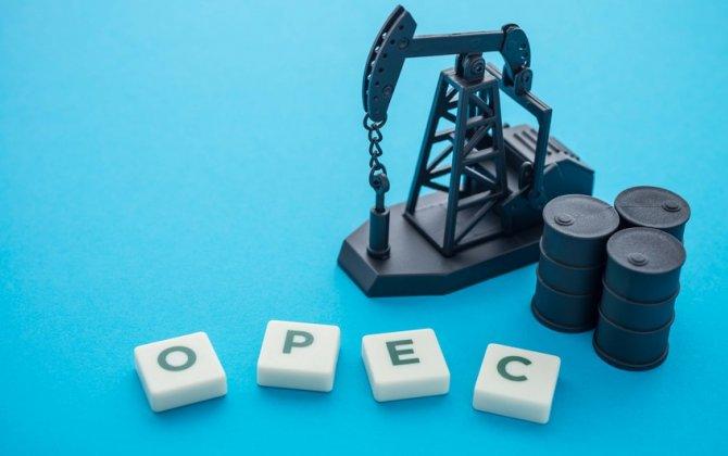 """Azərbaycan mayda """"OPEC plus"""" üzrə öhdəliyini yerinə yetirib"""