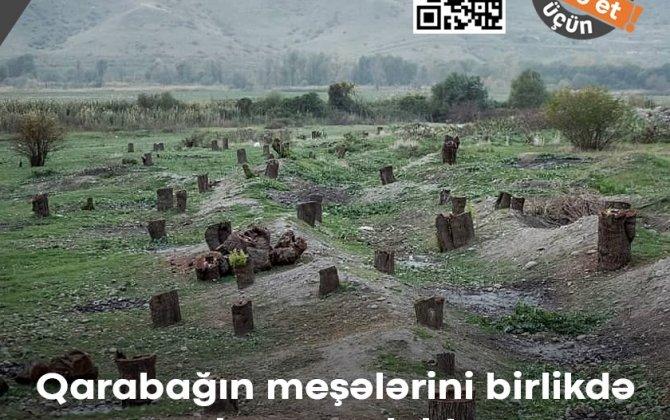 Türkiyədə baş verən meşə yanğınları, Qarabağda məhv edilən meşələr və tarixin dərsləri haqqında...