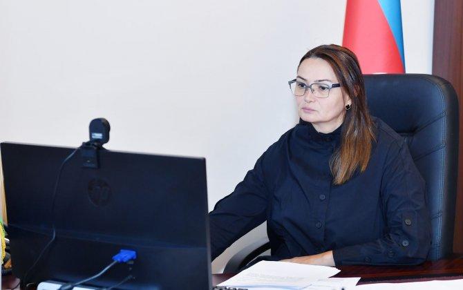 Milli Məclisin Mədəniyyət komitəsinin onlayn iclası keçirilib