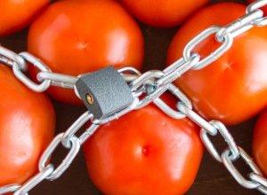 Ərdoğanın Krımla bağlı açıqlamasından sonra Türkiyə pomidorlarında virus